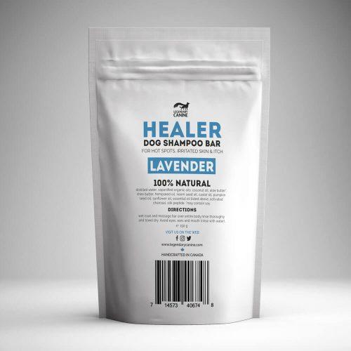 Healer-1000x1000